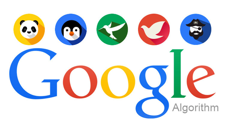 What Is the Importance of Google Algorithm Updates?